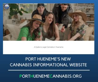 Cannabis Informational Website